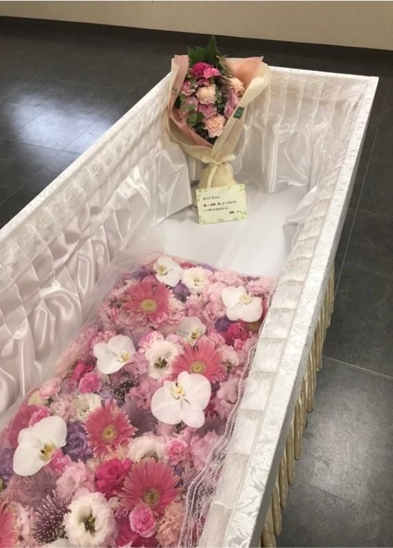 ファミリーホール港南台、華布団火葬プラン275,000円